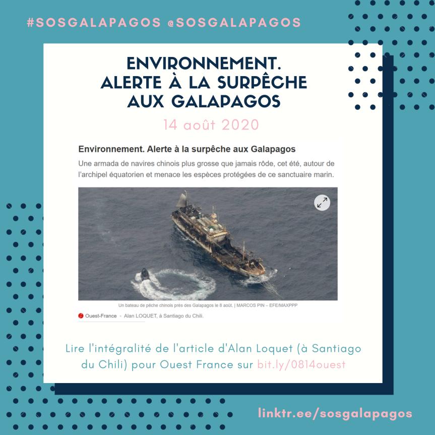 Alerte à la surpêche auxGalapagos