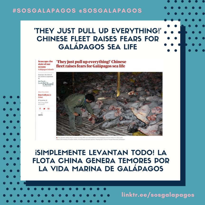 Chinese Fleet Raises Fears For Galápagos SeaLife
