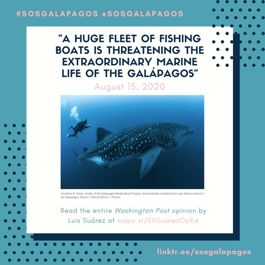 "Opinion – Suárez: ""A huge fleet of fishing boats is threatening the extraordinary marine life of theGalápagos"