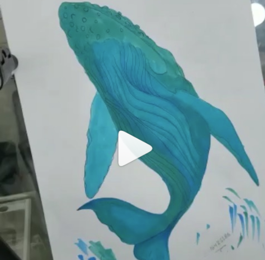 Artistic Commentary: Time Lapse In Advance of #WhaleSharkDay This Sunday(@picasodive)