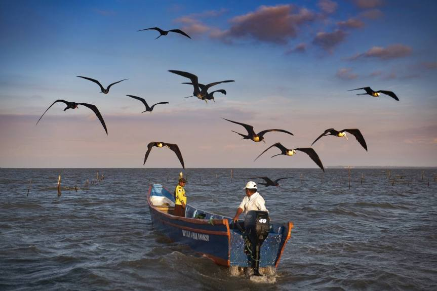 Ecuadorian fishing communities are 'severely' threatened by climatechange
