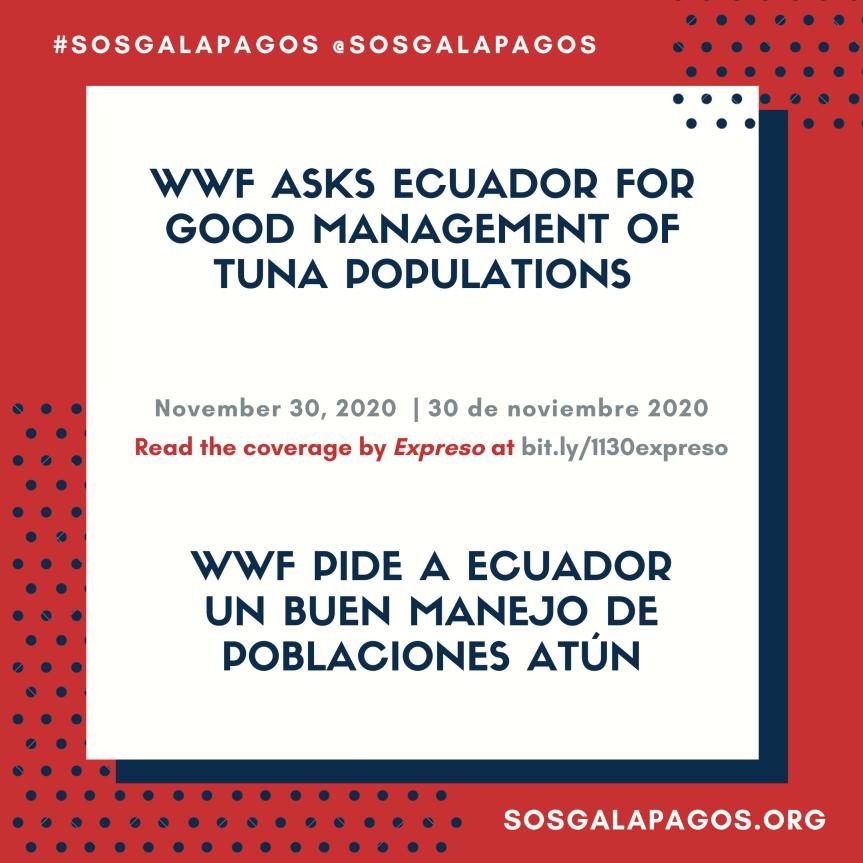 WWF asks Ecuador for good management of tunapopulations