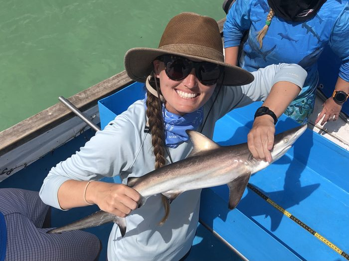 UNC institute's shark survey a trove of 50 years ofdata