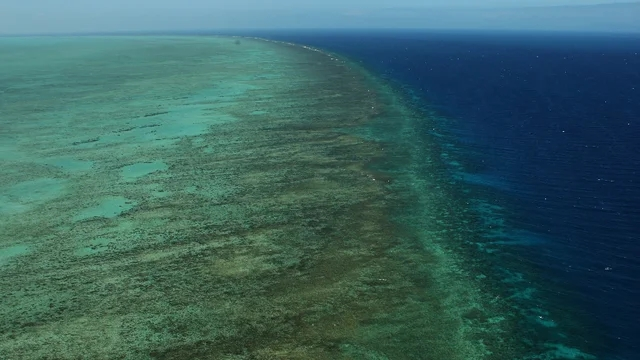 """The Great Barrier Reef actually is """"indanger"""""""
