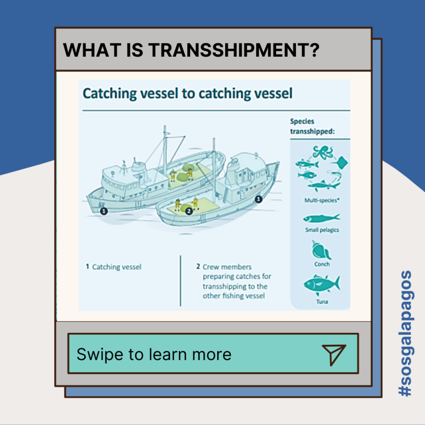 Explained: What istransshipment?